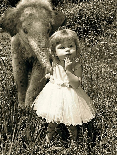 elephant and child